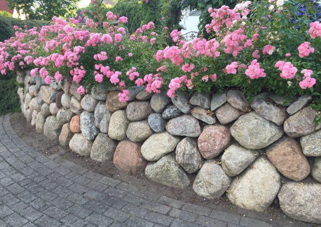 Natursteinmauern 10