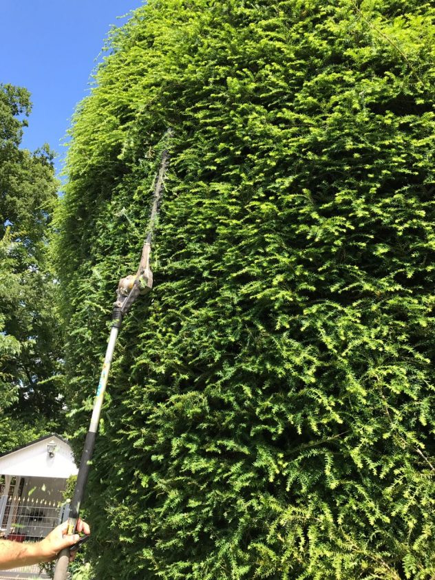 Gartenpflege Buchholz 1