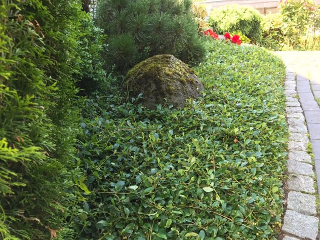 Gartenpflege Jesteburg